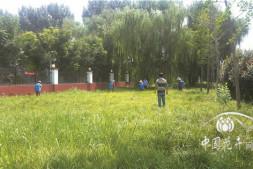 c恒达注册首页_选择草坪除草剂8条必知箴言