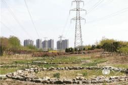 恒达娱待遇_贴近市民生活的城市休闲公园 记北京望和公园景观设计