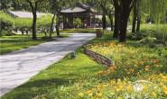 恒达注册平台_颐和园耕织图景区宿根花卉的应用