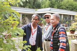 恒达信誉吗_北京世园会盆景国际竞赛积极筹备