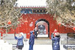 恒达娱乐_在北京植物园踏雪寻梅