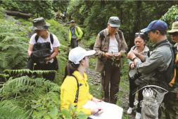 恒达平台_云南大理州完成野生山茶资源考察