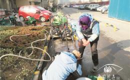 恒达代理平台_北方地产园林养护二月:立春和雨水