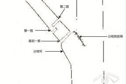 恒达平台登录_谈园林树木修剪标准(下)